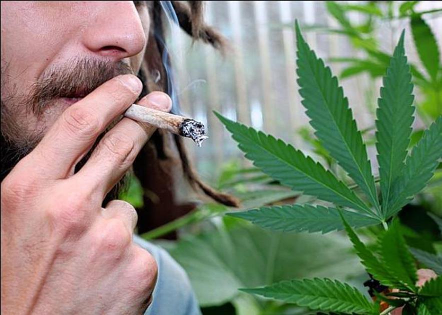 Как восстановить организм после длительного употребления марихуаны поле хорошей конопли