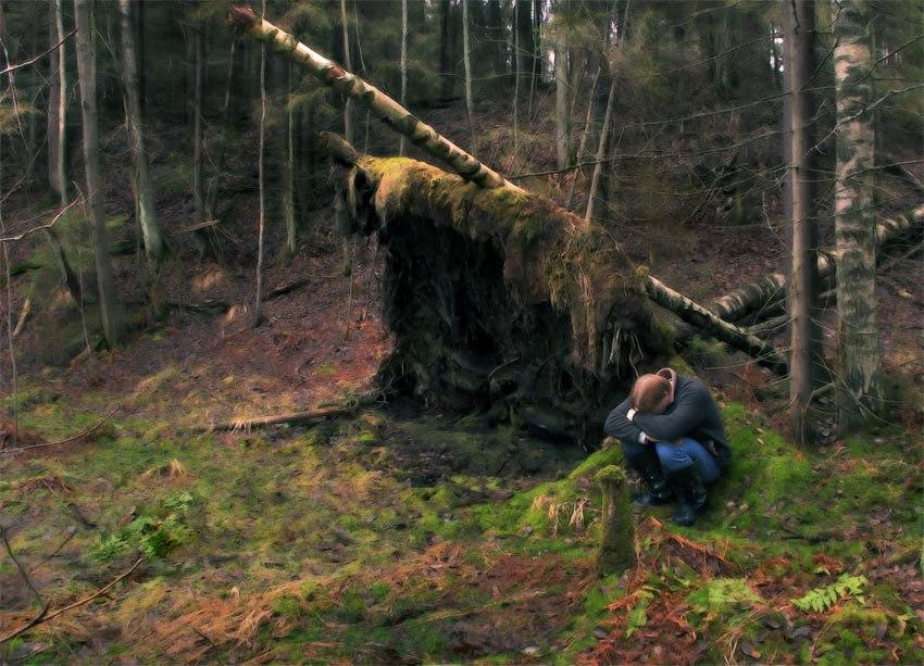 по лесу хождение незнакомому
